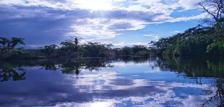 Brésil-Amazonie