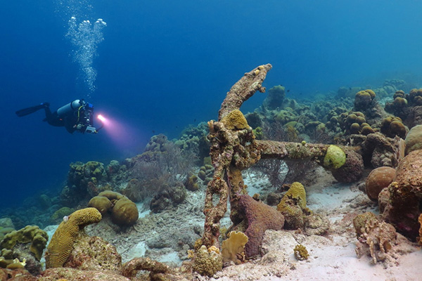 Parcs nationaux: les trésors naturels de Cuba